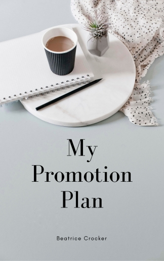 My Promotion Plan Graphics (2)